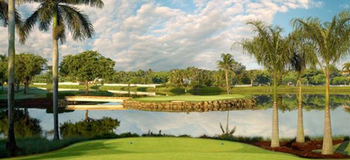 Picture of a Par 3 hole at the Miami Florida Doral Golf Course
