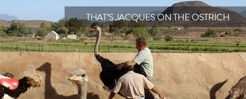 Jacques Gous atop an Ostrich