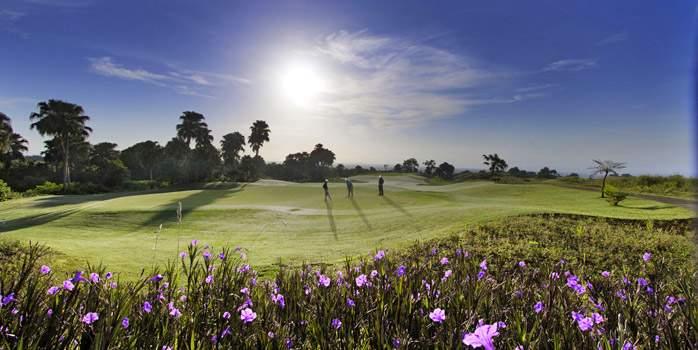 Avalon Golf Course Mauritius Flowers