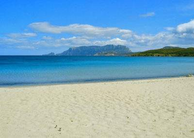 beach in Olbia